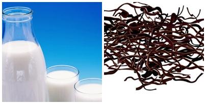 leche y algas macrobioticas