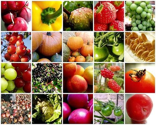 verdura macrobiotica