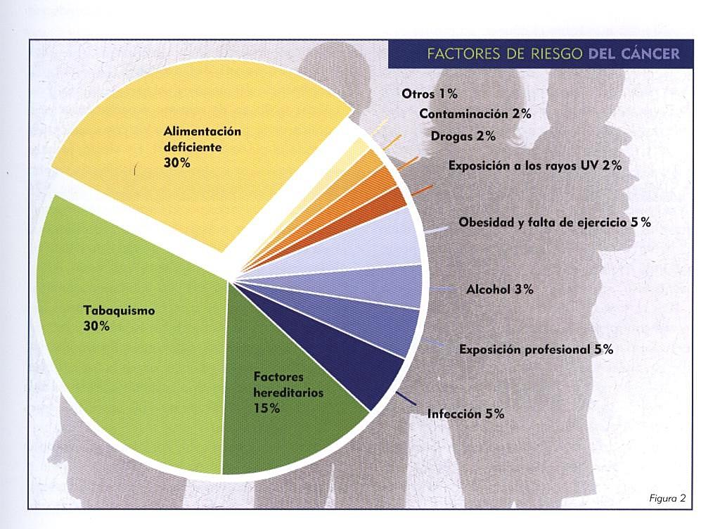 cancer factores riesgo y macrobiótica