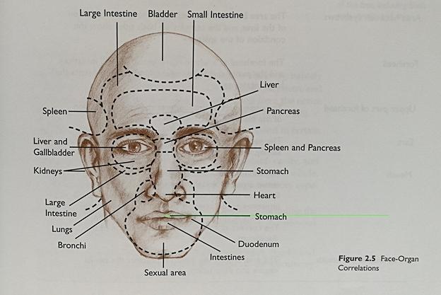 macrobiótica y el diagnostico facial